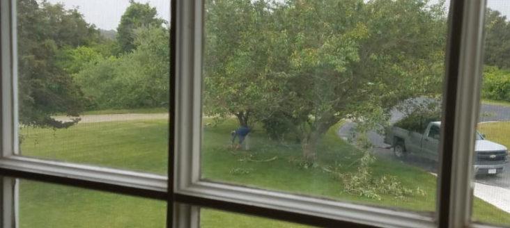 nantucket-neighbor