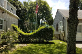 whale-hedge-on-nantucket